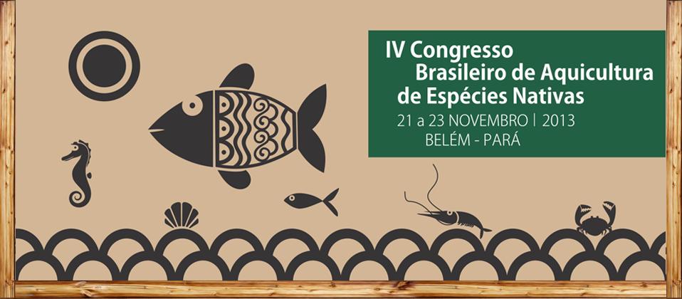 IV congreso Brasileño 2013