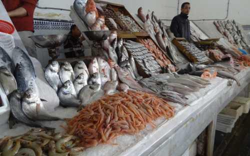 Pescado muy fresco en el mercado central de Casablanca