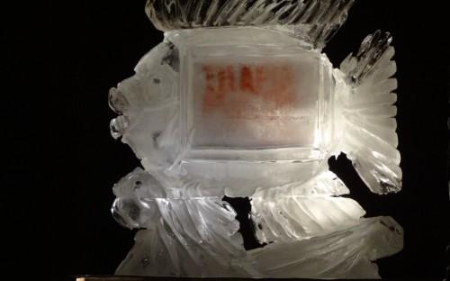 la Tilapia de hielo