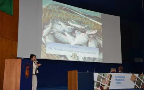 Doris Soto, de la FAO, presentando los desafios ambientales en la cría de tilapia